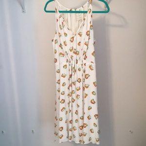 Kate Spade Orangerie Dress